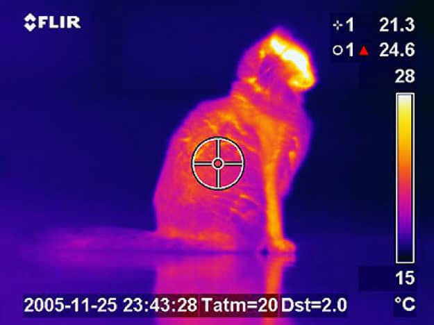 a thermal imager