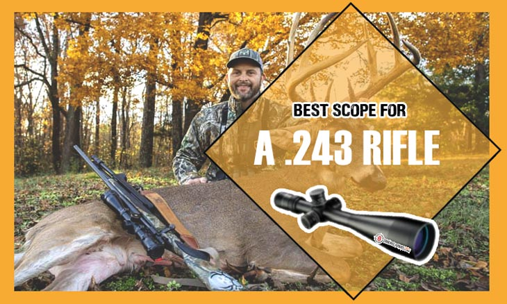 Best Scopes For A .243 Rifle